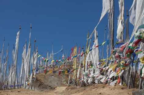 Drapeaux à prière au col entre Paro et Haa -