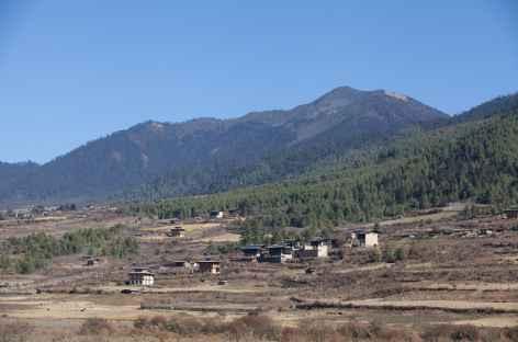 Dans la vallée de Phobjika -