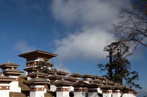 Le Dochu La, entre Thimphu et Punakha -