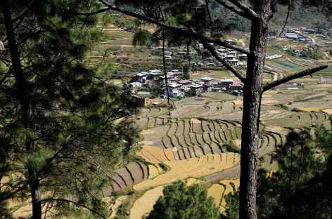 Petit village bhoutanais - Bhoutan -