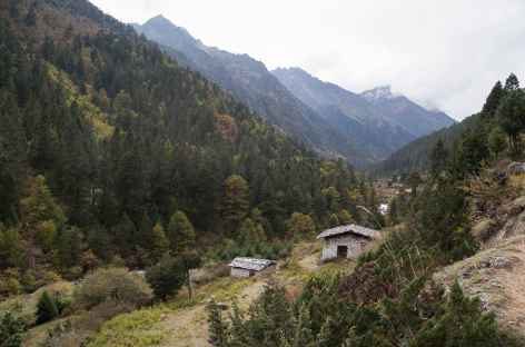 Un des hameaux entre Koina et Gasa - Bhoutan -