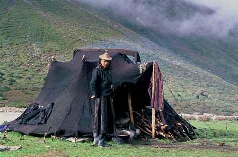Gardienne de yaks près de Nulithang - Bhoutan -