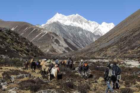 En montant vers Bamarpo  - Bhoutan -