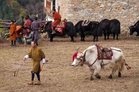 Laya - Bhoutan -