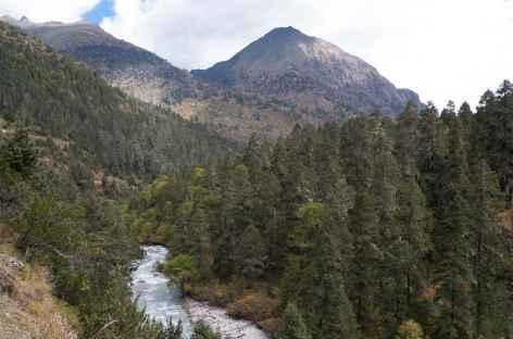 Vallée au dessus de Gasa- Bhoutan -