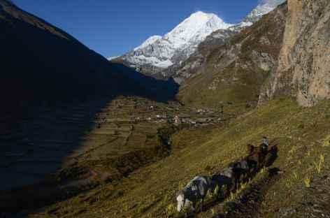 Jomolhari - Bhoutan -
