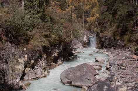Vallée de la Paro Chu- Bhoutan -