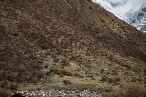 Maison d'alpage - Bhoutan -