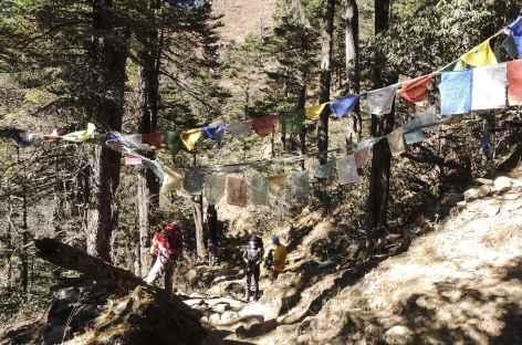 Sur le sentier - Bhoutan -