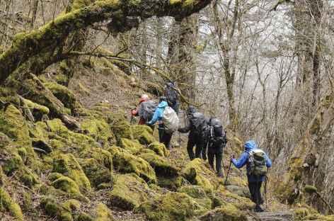 Trek entre Tashi Chu et Gorsum  - Bhoutan -