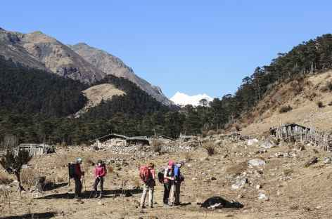 Alpage au-dessus de Tsampa  - Bhoutan -