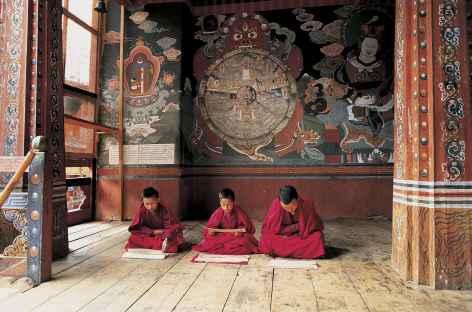 Jeunes moines à l'étude - Bhoutan -