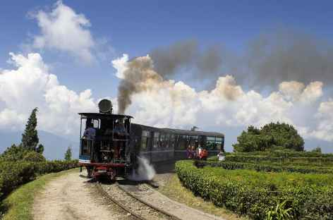 Darjeeling, le fameux Toy Train -