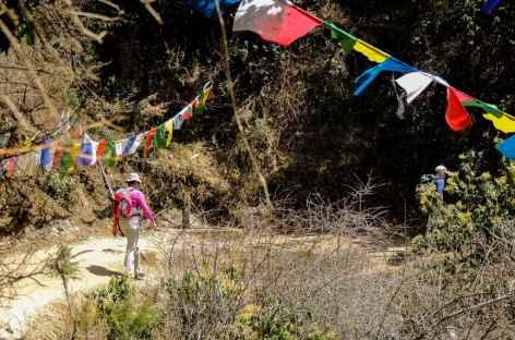 Descente vers Nikkachu - Bhoutan -
