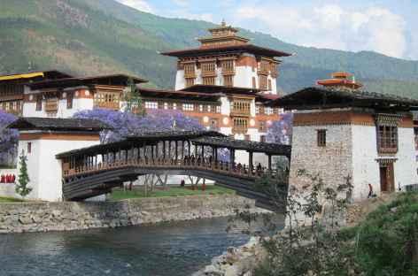 Le magnifique dzong de Punakha - Bhoutan -