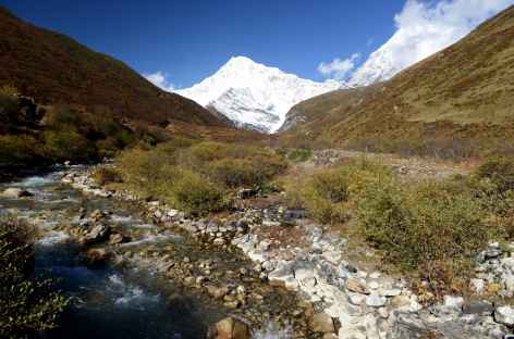 En chemin vers Chebisa - Bhoutan -