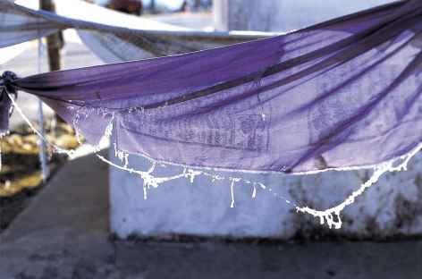 Drapeaux de prière pris dans le givre - Bhoutan -