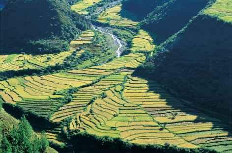 Rizières sur la route de Trashigang - Bhoutan -