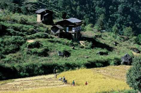 Village près de Kanglung - Bhoutan -