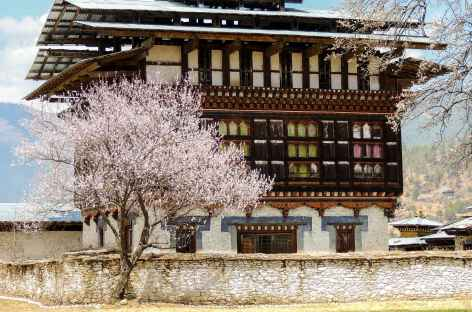 Maison seigneuriale de Ogyenchöling - Bhoutan -