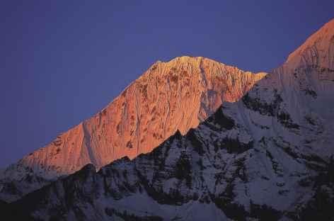 Jichu Drake (6794 m) depuis Chebisa au lever du soleil - Bhoutan -