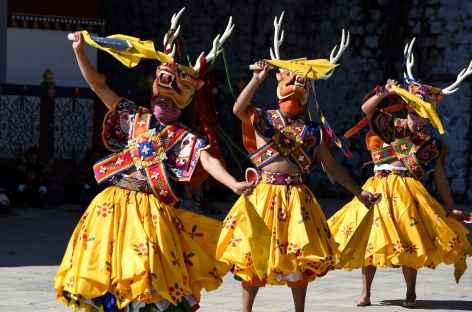 Festival religieux - Danse du cerf - Bhoutan -