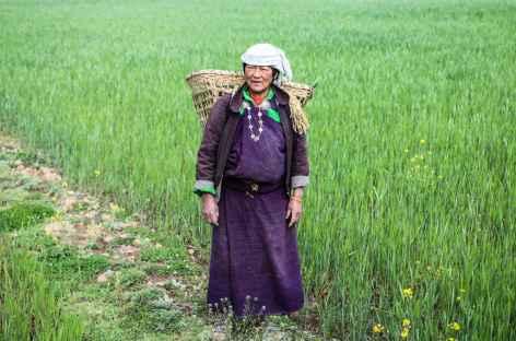 Travaux des champs Bhoutan -