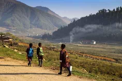 Vallée de Phobjika-Bhoutan -