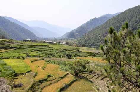 De Punakha à Nyezergang-Bhoutan -