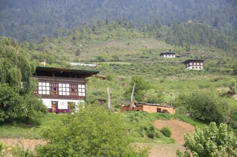 Maisons dans la vallée de Haa - Bhoutan -