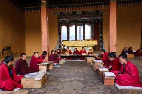 Ecole pour les jeunes moines à Gangtey  -