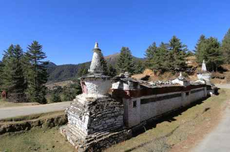 Phobjika Vallée de Gangtey  mur à mani -