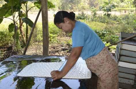 Travail du latex dans une plantation d'hévéas - Birmanie -