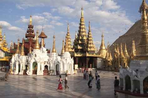 Pagode Shwedagon - Yangon - Birmanie -