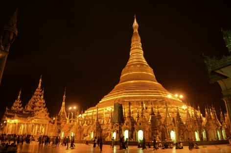 Pagode Shwedagon de nuit - Birmanie -
