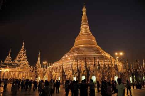 Yangon, la pagode Shwedagon de nuit - Birmanie -