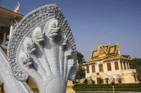 Phnom Penh, dans les jardins du palais Royal - Cambodge -