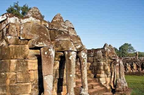 La terrasses des éléphants - Cambodge -