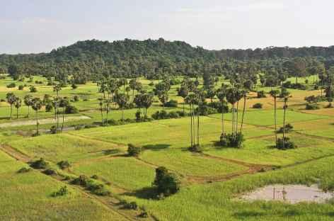 Rizières autour d'Angkor et colline de Bakheng - Cambodge -
