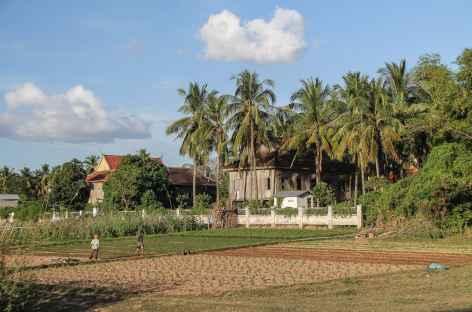 Campagne sur l'île de Koh Trong - Cambodge -