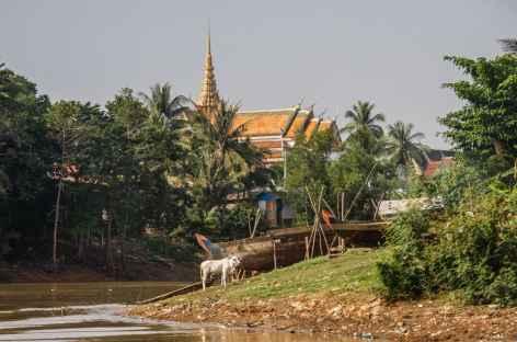 Mékong - Cambodge -