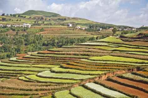 Dong Chuan - Yunnan, Chine -