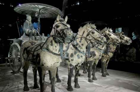 Cavaliers de terre cuite Xi'An - Chine -