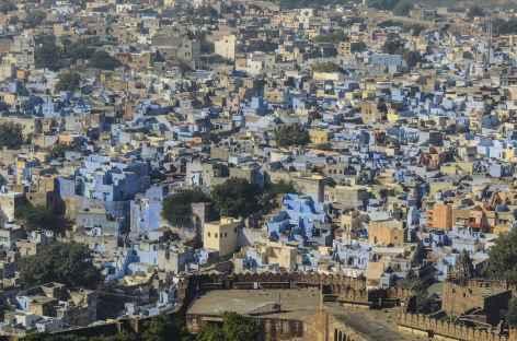 La ville bleue de Jodhpur - Rajasthan, Inde -