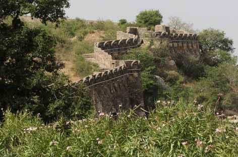 Fortification de Chittogarh - Rajasthan, Inde -