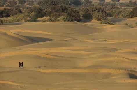 Balade dans le désert du Thar - Rajasthan, Inde -