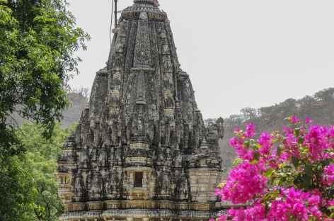 Le temple d'Adinath, joyau de l'architecture jaïn -