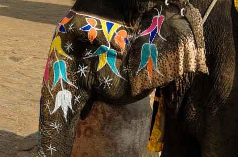 Elephant montant des visiteurs au fort d'Amber, Rajasthan -