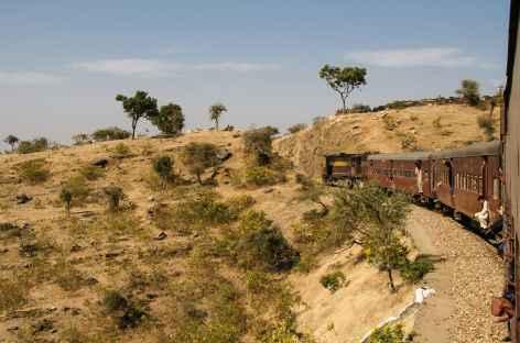 Le train parcourt la campagne -