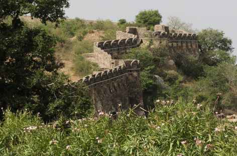 La muraille d'enceinte à Chittorgarh, Rajasthan, Inde -